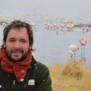Chilean Melton Fellow Diego Nicolas